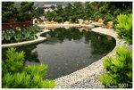 南蓮園池 - 蒼塘