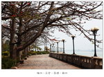 濱江文化公園