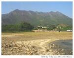 八仙嶺山火