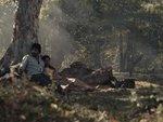 透過一對敵對村落的男女深入樹林當中所遇到的異像,說出戰爭的殘酷和傷痛,小孩的命運尤其堪虞
