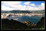 overview of wellington from mount victoria lookout