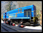 perurail from ollantaytambo to aguas calientes