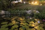香港公園IMG_0576