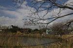 Mai Po Marshes (米埔濕地)