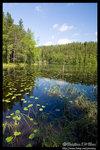 Scenery @ Nuuksio National Park