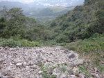 這裏是香蕉蘭石河還是企板石河哩 DSC08464