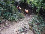 我繼續山路上走 DSCN0024