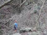左邊有樹根壁 DSCN0027