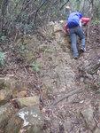 濕濕滑滑的馬尾脊路 DSCN0106