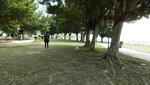數碼港遊公園 DSC02893