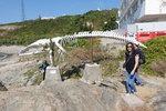 鶴咀海岸休護區內鶴咀海洋研究所的鯨魚骨標本 DSC03077