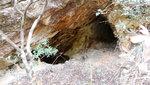 一大段後轉左穿林入新桂田右坑, 沿坑下降一段, 途中經一些廢礦洞 DSC03952