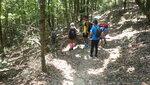 往打石湖橋頭山路途中轉左穿林入澗下降雙羊石澗左左支 DSC00391