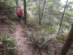 跨麥徑8段接山路開始落山啦 DSCN5396