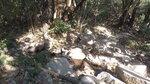 入澗上溯禾秧坑 DJI_0244