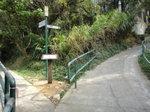分岔位, 右往明暉路, 左往小長城 DSC03997