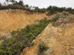 沖坡, 少少似青山的地貌 DSC04101