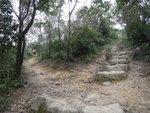 今次行左邊的越野單車徑, 右邊是釣魚翁郊遊徑, 兩條路徑會在上面匯合 DSC04801