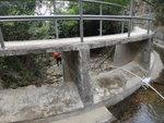 下降爛泥灣坑(31號)至引水道離澗 DSC07749