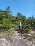 至壁頂繼續穿林上山 DSC09032