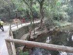 過橋轉右可往新娘潭亦可中途接船灣淡水湖郊遊徑上登馬頭峯 DSC09123