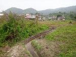 烏蛟騰新屋下村 DSC09129