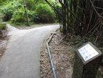 分岔路, 左邊是九担租村村口 DSC09132