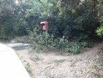 大浪坳緊急電話旁有小路可上大蚊山 DSC09517