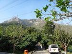 青山寺徑中上望青山頂的發射站 DSC00019