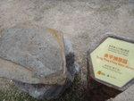 涼亭旁岩石介紹 - 東平洲的粉砂岩 DSC00642