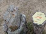 馬屎洲泥岩 DSC00645