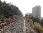 石級頂是火車軌 DSC01914