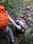 山路回落瀑頂去 DSC02184