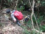 左邊可借樹上, 過埋這個位澗道開始平緩 DSC02255