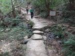 剛才是澗邊山路上接麥徑, 其實澗道在此接麥徑 DSC02260