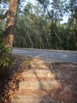 石級頂見馬路 DSC02348