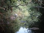 下降猴塘溪下游到一淺潭 DSC02365