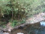 下降猴塘溪下游, 唔想濕腳, 要時左時右山路過 DSC02370