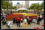 2007-03-16@HK flower show-25