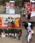 SAA - 保護遺棄動物協會 慈善扭氣球活動