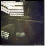 Holga_Fuji100_091