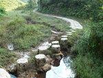 012:分水坳梅花樁