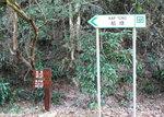 049:道左山徑可登蛤塘及梅子林