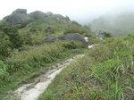 024:登大東山