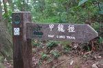 023:甲龍林徑(Kelvin提供)