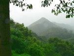 007:流水響眺望170米高大嶺皮(排)