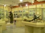 018:這挺輕機原是水警輪軍備,49年被中共遊擊隊劫走,53年英軍在韓戰中奪回(警隊博物館)