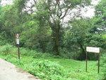 021:電訊坳東面十字小坳落蓮北林徑