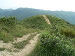 020:此徑下通西灣路萬宜坳
