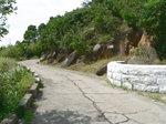 024:聶高信山登山口(布力徑)